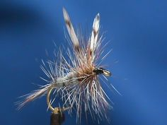 Beginner Fly Tying a Delaware River Adams with Jim Misiura - YouTube