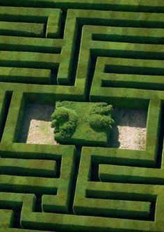 Traveling in Green - Château de Versailles Labyrinthe