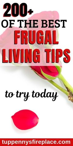 Learn how to be frugal with great frugal living ideas. Simple ideas for your frugal lifestyle, all the best frugal living tips you need. Living Cheaply, Living On A Budget, Frugal Living Tips, Living At Home, Frugal Tips, Simple Living, Best Money Saving Tips, Money Tips, Saving Money