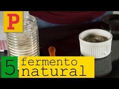 Como fazer fermento natural - Vídeo 5