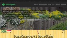 Saját weboldalaim-Webnode