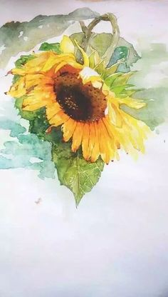 Watercolor - flowers, fruits, and veggies. Watercolor Projects, Watercolor Artwork, Watercolor Illustration, Watercolour, Sunflower Art, Watercolor Sunflower, Watercolor Flowers, Guache, Beautiful Paintings
