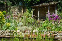 Exotic Garden, England. http://www.exoticgarden.com/blog/
