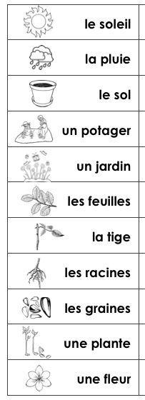word stripd for journals and agendas - Madame Belle Feuille: Les plantes et le jour de la terre - Plants and earth day