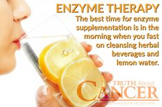 The best time for enzyme supplementation is in the morning when you can fast on cleansing herbal beverages and lemon water. Click through to learn more about the role of systemic proteolytic enzymes on cancer. Article by Dr. David Jockers DC, MS, CSCS. Please re-pin to share with your friends! // The Truth About Cancer