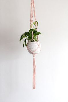 Modern Macrame Plant Hanger Tutorial with T-Shirt Yarn