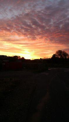 Valby morning