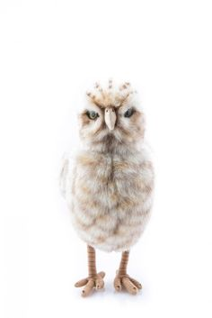 Pigment - Lifelike Plush Burrowing Owl , $45.00 (http://www.shoppigment.com/lifelike-plush-burrowing-owl/)