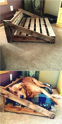 Animal stuff pallet ideas for dad, diy pallet, pallet crafts, diy wood projects Recycled Pallets, Wooden Pallets, Pallet Crafts, Pallet Projects, Diy Pallet, Pallet Wood, Pallet Dog Beds, Pallet Dog House, Diy Dog Bed