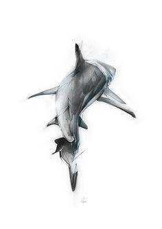 "Curioos.com | ""Shark II"" by Alexis Marcou (United Kingdom)…"