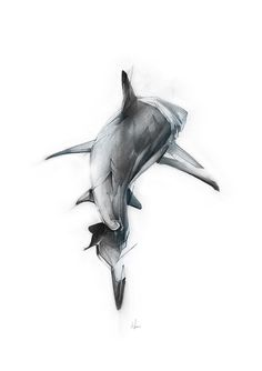 """Curioos.com   """"Shark II"""" by Alexis Marcou (United Kingdom) - https://pinterest.com/curioos"""