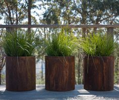 Planters on balcony with native grasses