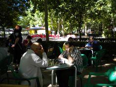 http://lasalamandrasiguenza.wordpress.com/2014/05/27/campeonato-de-ajedrez-de-siguenza-san-juan-2014/