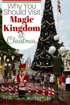 Plan the perfect trip to Walt Disney World at Christmas! It is a wonderful time of the year. Magic Kingdom Food, Magic Kingdom Rides, Disney World Magic Kingdom, Disney World Parks, Disney World Planning, Walt Disney World Vacations, Disney World Tips And Tricks, Disney Tips, Disney Love