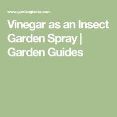 Vinegar as an Insect Garden Spray |  Garden Guides