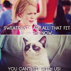 JUST BECAUSE WE WATCHED MEAN GIRLS ON THE BUS TO NEW YORK AND I FINALLY UNDERSTAND ALL THE MEAN GIRLS REFERENCES!