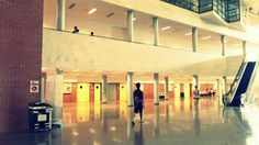 University in Elche
