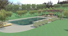 Render di una piscina e stistemazione esterna del verde, creato con Revit 2015
