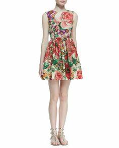 T7ZC6 RED Valentino Macro-Flower-Print Poplin Dress, Bougainvillea (Stylist Pick!)