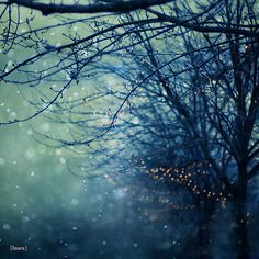 """Christmas Snow Photography - Abstract Holiday Lights - Dreamy and Vintage Inspired - Home Decor - Fine Art Photography - """"Silent Night"""". $25.00, via Etsy."""