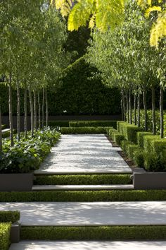 Peter Fudge Gardens have created a severely disciplined garden, based on formal geometric principles and evoking French formal gardens. Modern Landscaping, Backyard Landscaping, Landscaping Ideas, Contemporary Landscape, Landscape Design, Contemporary Design, Contemporary Architecture, Landscape Architecture, Canada Landscape