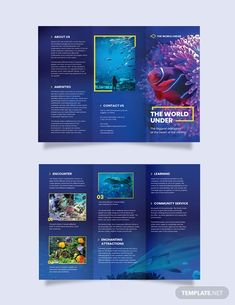 Through attractive brochures, you can write about and endorse your services to huge customers in the online marketplace. Aquarium brochures help to win new business as well as up-sell… Yearbook Pages, Yearbook Spreads, Yearbook Covers, Yearbook Layouts, Yearbook Design, Yearbook Theme, Magazine Layout Design, Book Design Layout, Design Design
