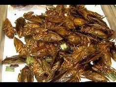 International Street Foods in Guangzhou Canton China Full Documentary - YouTube