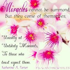 Miracles quote via www.Facebook.com/WatchingWhales