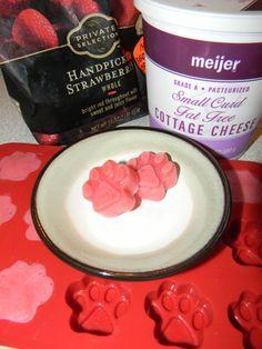 Cottage Cheese & Strawberry Delights (doggiesandstuff.com)