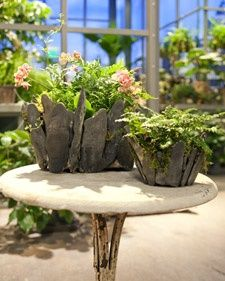 How to Make Stone Planters and more on MarthaStewart.com