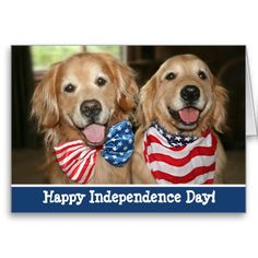 Patriotic Golden Retriever Independence Day Cards.  $4.15