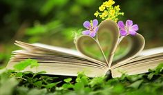Unusual Flowers Books Hd Wallpapers