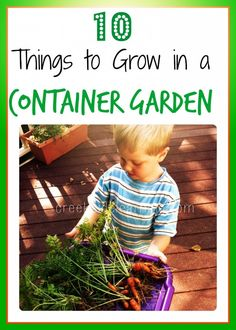 #ad Container Garden Vegetables: 10 Things You Can Grow with Your Kids. Learn about the growing process and how to care for seedlings.