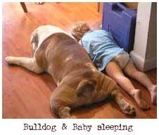 Bulldogs and Babies « BaggyBulldogs
