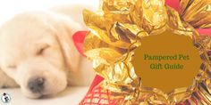 Pampered Pets Gift Guide It's Totally Pawsome! #pets #gifts  ||  Pampered Pets Gift Guide It's Totally Pawsome! Gifts pet owners and pets will simply love! #pets #gifts #giftguide #giftsforpets #animallovers https://www.fashionbeyondforty.com/2017/11/pampered-pets-gift-guide.html?utm_campaign=crowdfire&utm_content=crowdfire&utm_medium=social&utm_source=pinterest
