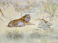 Anton Romako | Tiger | 1870 | The Albertina Museum, Vienna #VienneseWatercolor Anton, Vienna, Museum, Paintings, Watercolor, Artist, Animals, Ink Paintings, Landscape