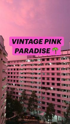 VINTAGE PINK PARADISE 🌴