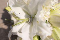 Sparkling in the sun! Photo by Ashley Y. #MNWeddingFlorists #WeddingFlowers
