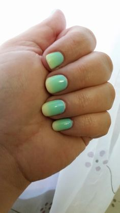 Light blue, light green and pale yellow gradient