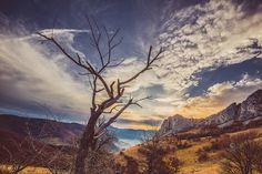 Trascau Mountains, Transylvania by Sergiu Baciou