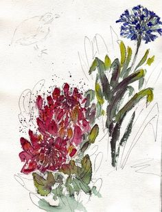Fynbos watercolor My Land, Earthy, South Africa, Year Planning, Flora, African, Birds, Colours, Watercolor