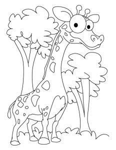 Easy Apple Coloring Pages