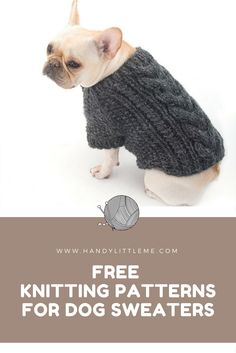 Free dog sweater knitting patterns for your furry friends. make one today and keep your doggy warm in the fall weather. Knitted Dog Sweater Pattern, Dog Coat Pattern, Knit Dog Sweater, Small Dog Coats, Small Dog Sweaters, Crochet Dog Clothes, Dog Crochet, Knitting Patterns For Dogs, Whippets