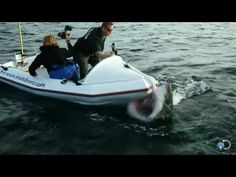 Little Bitty Boats and Big Sharks Don't Mix | Shark Week - YouTube
