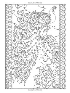 Peacock Coloring Pages Printable - Free Coloring Sheets Peacock Coloring Pages, Bird Coloring Pages, Adult Coloring Book Pages, Mandala Coloring Pages, Printable Coloring Pages, Coloring Sheets, Free Coloring, Peacock Drawing Images, Zentangle