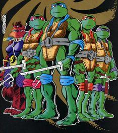 The turtles plus Ninjara.