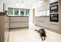 Tiles make the perfect flooring for any family kitchen space - hard wearing, easy to clean and with underfloor heating - super cosy! Especially for dogs! Wood Effect Tiles, Kitchen Gallery, Underfloor Heating, Family Kitchen, Kitchen Design, Kitchen Ideas, Contemporary, Modern, Minimalism
