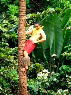 Ponapati Seupule posing for the tourists at the Polynesian Cultural Center, Tree 90 X he says, Samoan village for anybody who wants to watch him climb a tree. lol