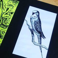 ...old hand-drawn bird illustration. I think this is a copy, the original is stored away somewhere close yet to be found!  . . #featheredfriends #birdoftheday #ink #budgies #art #birdart #design #instaart #instabudgie #instalike #birds #budgie #illustrations #instadraw #instabirds #ornithology #fågel #birdsofinstagram #artportfolio #artistsofinstagram #joey #pets #budgiesofinstagram #artofig #birdsofafeather #starbirds #stormpoopers