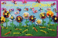 Spring // Lifecycles // Open House // Preschool Bulletin Board
